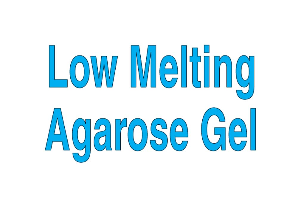 Low Melting Agarose Gel